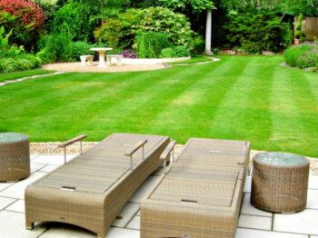 A Beautiful Lawn