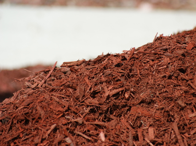 Ingenious Use for Wood Chips in the Garden - GoTo4Gardening