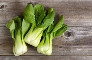 oriental vegetables pak choi