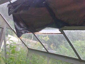 greenhouse holiday shade