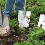 garden-spade