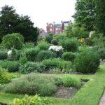 chelsea-physic-garden