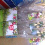 tesco apple trees